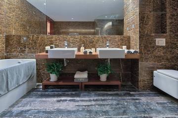 interior of luxury bathroom