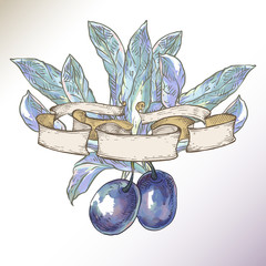 Plums with leaves in ribbons.