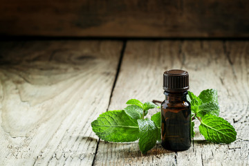 Essential oil of peppermint in a small brown bottle with fresh g