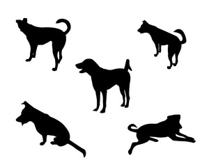 Set of dog silhouette white background