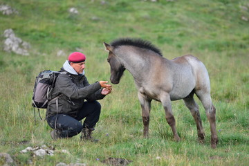 photographer outdoor with horse