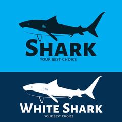 Vector modern logo in the shape of a shark. Brand logo.