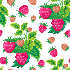 Pattern of raspberry hand painted. Fruit seamless background for menu and desserts, restaurants and cafes, wallpaper etc.