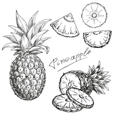 hand drawn set a pineapple