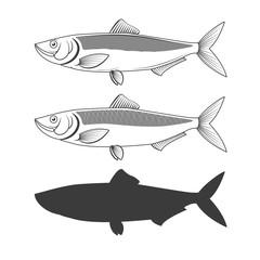 Set of herring fish illustrations.