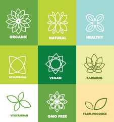 Vector company logo icon element template abstract flower green organic natural eco food