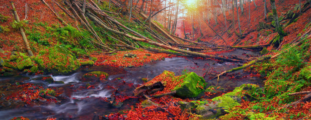 Stream in the forest gold