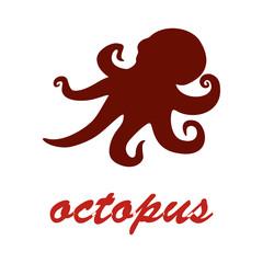 vector image contour octopus