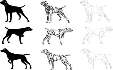 Dog, bird dog, dog hunting, shooting, fowling, breed, silhouette, vector, symbol, Kurzhaar
