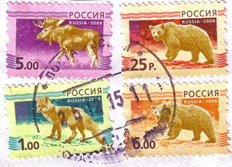 RUSSIA-CIRCA 2008: A four stamps printed in the Russian Federation, depicts a male elk with antlers, fox (Vulpes vulpes), and Brown bear - Ursus arctos, circa 2008