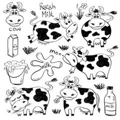 Set Of Isolated Funny Cow Icons.