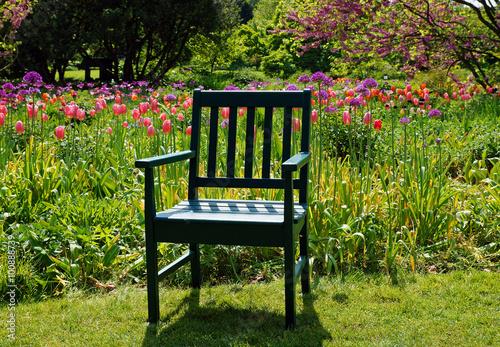 tulpen farben f r die seele immagini e fotografie royalty free su file 100888739. Black Bedroom Furniture Sets. Home Design Ideas