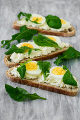Spring sandwiches with cheese, eggs and rucola