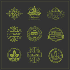 Set of organic and eco food badges and labels.