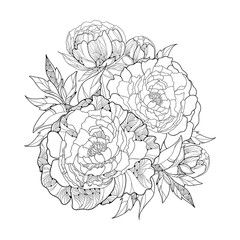 Round bouquet with five ornate peony flower and leaves isolated on white background. Floral elements in contour style.