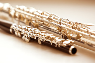 Two flute close up lying on a light background