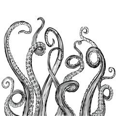 Hand Drawn Tentacle Illustration