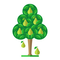 Pear tree. Flat design. Vector illustration.