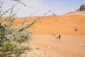 Touristen in der Wüste