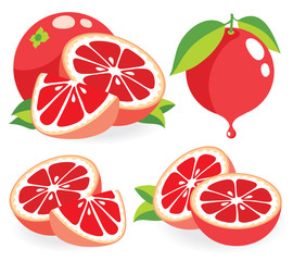 Pink grapefruits vector illustrations