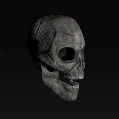 digital computer rendered illustration of a skull isolated on black