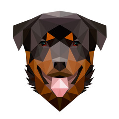 Vector low poly rottweiler dog