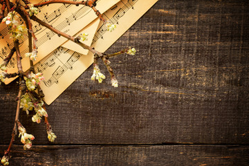 Blooming apple tree branch on a wooden background, top view