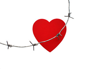 Barbed wire injures red heart. heart trapped in barbed wire, the concept of unrequited love, Stockholm Syndrome. Isolated on white background