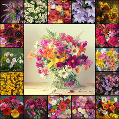 Collage from pictures with flowers.