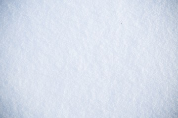 Fresh real snow texture background in blue tone