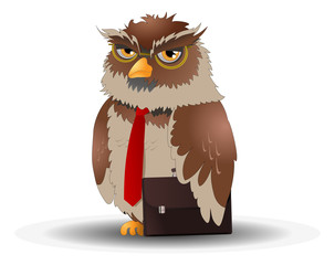 business owl pose  on isolated white background