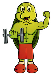 Cartoon illustration of a turtle holding dumbbell