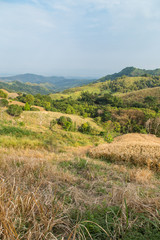 Shifting Cultivation in Northern Thailand