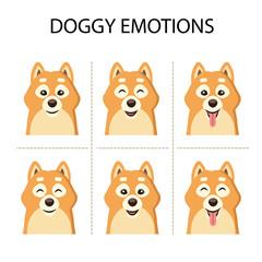 Dog portrait collection