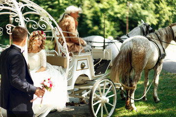 Fairy-tale cinderella wedding carriage and horse magical wedding
