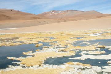 The Altiplano - Chile
