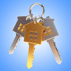 Bunch of golden and silver house-shape keys on a key ring on blue background