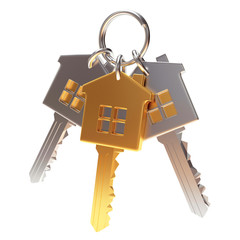Bunch of golden and silver house-shape keys on a key ring isolated on white background