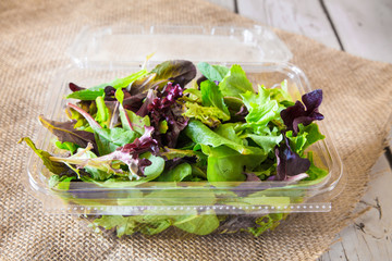 Fresh greens in spring mix salad container