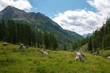 Beautiful landscape in Tyrol, Austria
