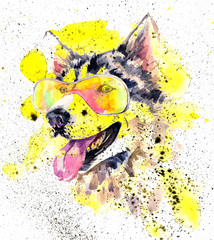 Watercolor siberian husky dog in glasses and yellow splashes