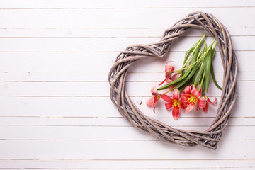 Pink tulips flowers  and decorative heart on white  wooden plank
