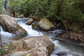 stream flow through the forest with rocks two sides