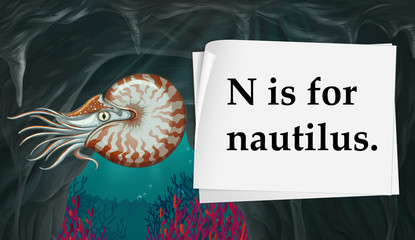 Letter N is for nautilus