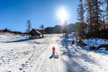 Girl is pulling snow sledge in ski resort  wearing winter clothe