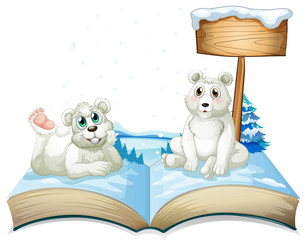 Book of two polar bears on snow