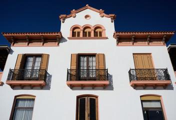 Large White Spanish House
