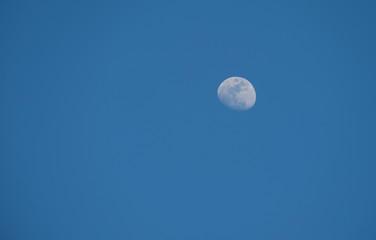 Moon in evening light
