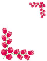 Red Tulips Frame Card illustration