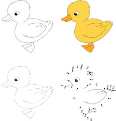 Cartoon duckling. Vector illustration. Dot to dot game for kids